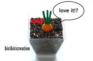 radish wortel 2